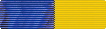 Delaware National Guard Medal