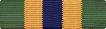 Texas Homeland Defense Medal